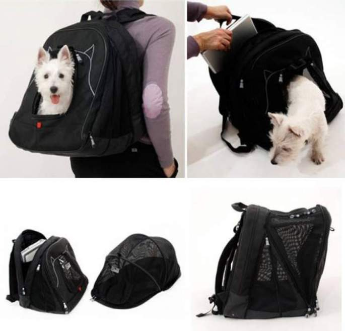 petego-pet-carrier