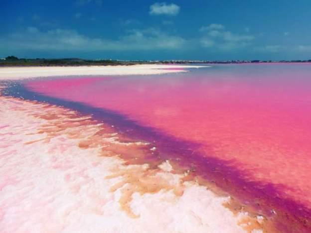 pink-lake-3
